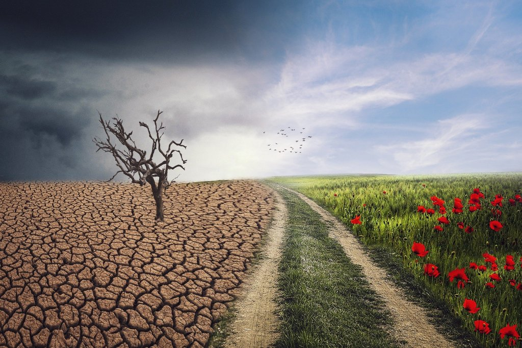 changing-landscape